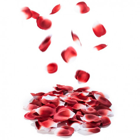 Rose Petal Explosion - Pétales parfumés