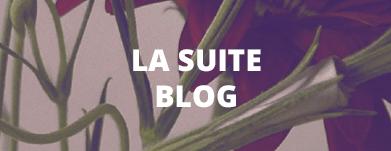 La suite blog